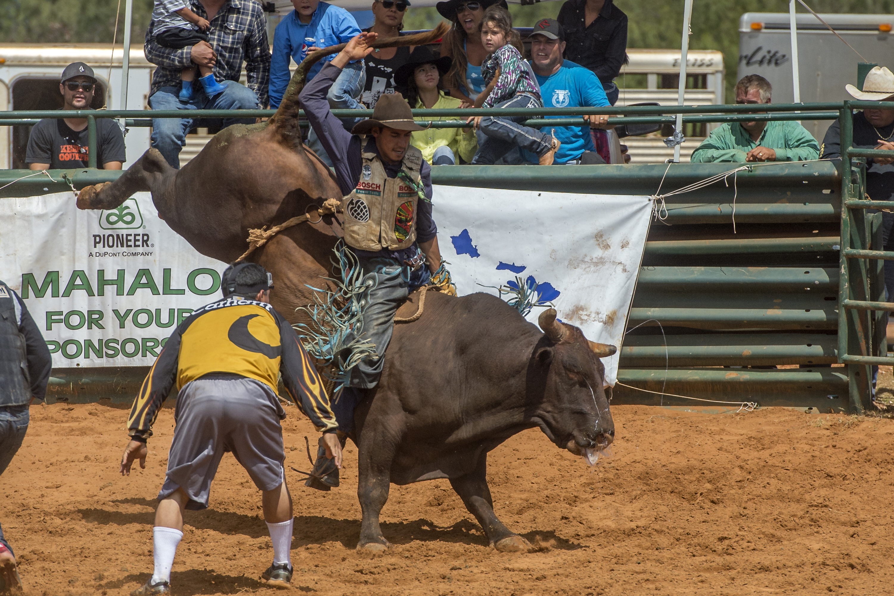 Koloa_Ranch_Bull Riding